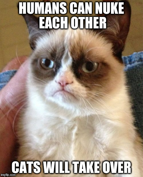 Grumpy Cat Meme | HUMANS CAN NUKE EACH OTHER CATS WILL TAKE OVER | image tagged in memes,grumpy cat | made w/ Imgflip meme maker