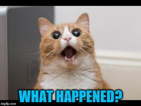 WHAT HAPPENED? | made w/ Imgflip meme maker