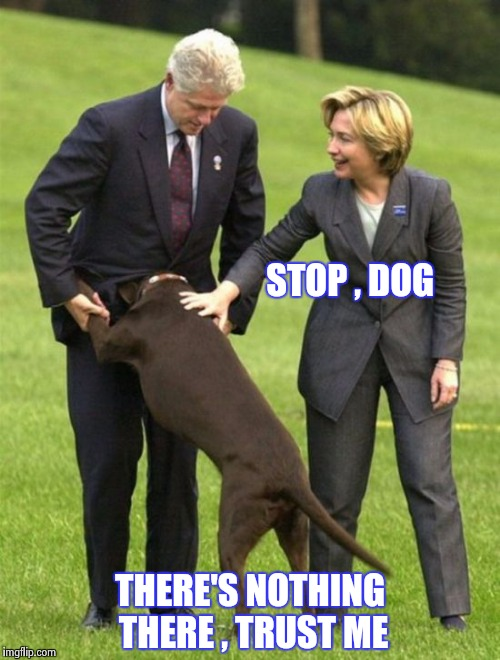 Having fun playing with his humans | STOP , DOG THERE'S NOTHING THERE , TRUST ME | image tagged in bubba,wtf hillary,dog,i'm smarter than you | made w/ Imgflip meme maker