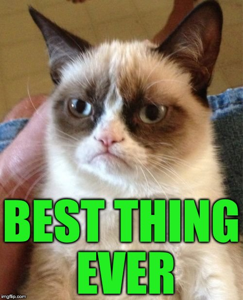 Grumpy Cat Meme | BEST THING EVER | image tagged in memes,grumpy cat | made w/ Imgflip meme maker