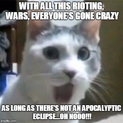 WITH ALL THIS RIOTING, WARS, EVERYONE'S GONE CRAZY AS LONG AS THERE'S NOT AN APOCALYPTIC ECLIPSE...OH NOOO!!! | image tagged in shocked cat | made w/ Imgflip meme maker