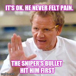 Memes, Cooking | IT'S OK. HE NEVER FELT PAIN. THE SNIPER'S BULLET HIT HIM FIRST | image tagged in memes,cooking | made w/ Imgflip meme maker
