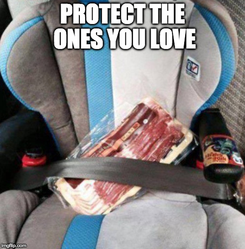 Awwww..... | PROTECT THE ONES YOU LOVE | image tagged in protection,buckle up,it's the law,iwanttobebacon,iwanttobebaconcom,car seat | made w/ Imgflip meme maker