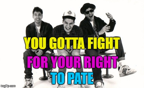 YOU GOTTA FIGHT TO PATE FOR YOUR RIGHT | made w/ Imgflip meme maker