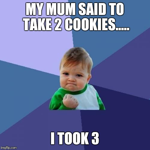 Success Kid Meme | MY MUM SAID TO TAKE 2 COOKIES..... I TOOK 3 | image tagged in memes,success kid | made w/ Imgflip meme maker