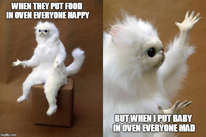 Persian Cat Room Guardian Meme | WHEN THEY PUT FOOD IN OVEN EVERYONE HAPPY BUT WHEN I PUT BABY IN OVEN EVERYONE MAD | image tagged in memes,persian cat room guardian | made w/ Imgflip meme maker