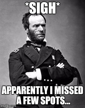 General Sherman | *SIGH* APPARENTLY I MISSED A FEW SPOTS... | image tagged in general sherman | made w/ Imgflip meme maker