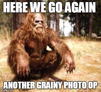 bigfoot | HERE WE GO AGAIN ANOTHER GRAINY PHOTO OP | image tagged in bigfoot | made w/ Imgflip meme maker