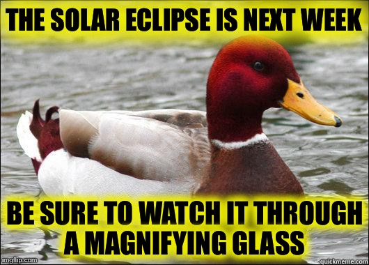 The Solar Eclipse:  Where will you watch it from? | THE SOLAR ECLIPSE IS NEXT WEEK BE SURE TO WATCH IT THROUGH A MAGNIFYING GLASS | image tagged in make actual bad advice mallard,solar eclipse | made w/ Imgflip meme maker
