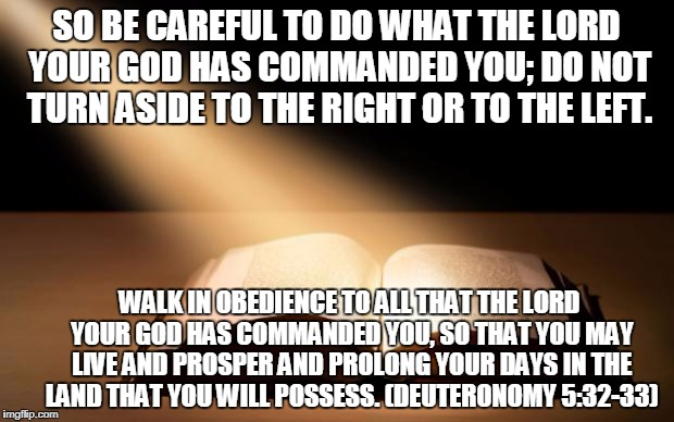 American Civil War | SO BE CAREFUL TO DO WHAT THE LORD YOUR GOD HAS COMMANDED YOU; DO NOT TURN ASIDE TO THE RIGHT OR TO THE LEFT. WALK IN OBEDIENCE TO ALL THAT T | image tagged in bible,alt right,alt left,charlottesville,constitution | made w/ Imgflip meme maker