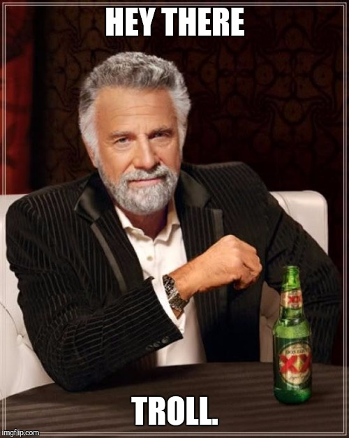 The Most Interesting Man In The World Meme | HEY THERE TROLL. | image tagged in memes,the most interesting man in the world | made w/ Imgflip meme maker