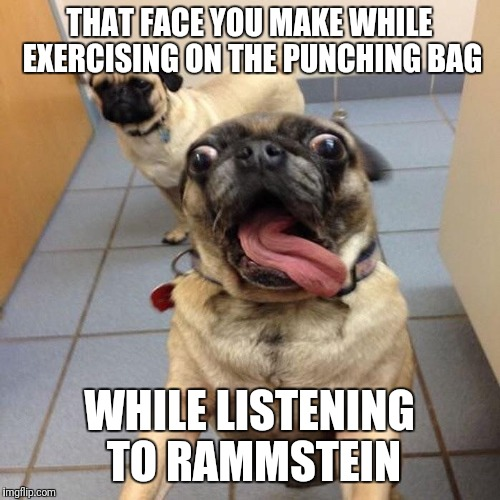 Excited dog | THAT FACE YOU MAKE WHILE EXERCISING ON THE PUNCHING BAG WHILE LISTENING TO RAMMSTEIN | image tagged in excited dog | made w/ Imgflip meme maker