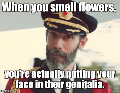 When you smell flowers, you're actually putting your face in their genitalia. | made w/ Imgflip meme maker