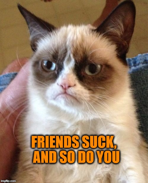 Grumpy Cat Meme | FRIENDS SUCK,  AND SO DO YOU | image tagged in memes,grumpy cat | made w/ Imgflip meme maker