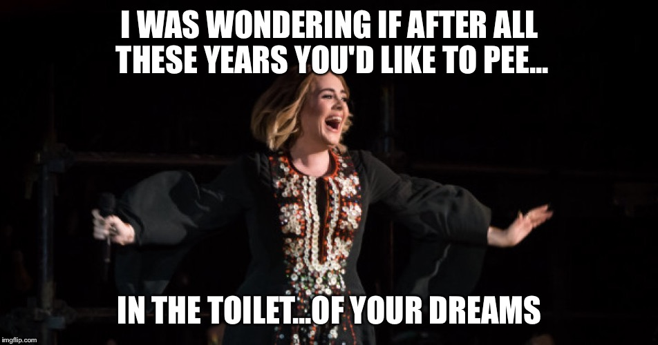I WAS WONDERING IF AFTER ALL THESE YEARS YOU'D LIKE TO PEE... IN THE TOILET...OF YOUR DREAMS | image tagged in adele | made w/ Imgflip meme maker