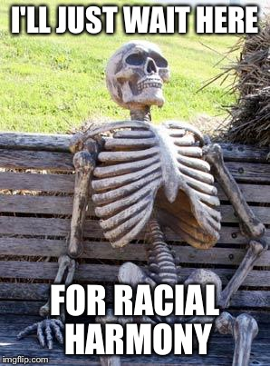 Waiting Skeleton Meme | I'LL JUST WAIT HERE FOR RACIAL HARMONY | image tagged in memes,waiting skeleton,racism | made w/ Imgflip meme maker