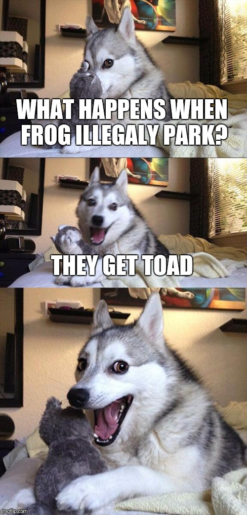 Bad Pun Dog Meme | WHAT HAPPENS WHEN FROG ILLEGALY PARK? THEY GET TOAD | image tagged in memes,bad pun dog | made w/ Imgflip meme maker