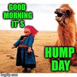 happy girl and camel | GOOD MORNING IT' S HUMP DAY | image tagged in happy girl and camel | made w/ Imgflip meme maker
