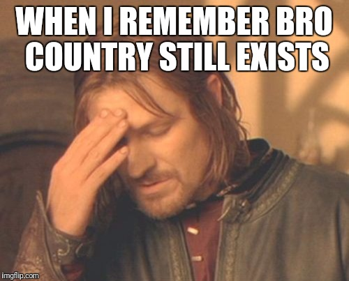 Frustrated Boromir Meme | WHEN I REMEMBER BRO COUNTRY STILL EXISTS | image tagged in memes,frustrated boromir | made w/ Imgflip meme maker