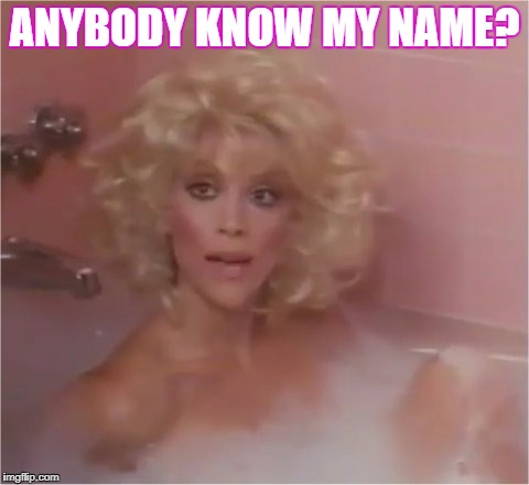 Guess what it is?  No peeking at the tags neither. | ANYBODY KNOW MY NAME? | image tagged in judy landers,bubbles tags audrey,no hip burn,leather under locks no her,bath tub | made w/ Imgflip meme maker