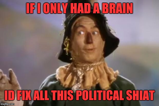 Scarecrow | IF I ONLY HAD A BRAIN ID FIX ALL THIS POLITICAL SHIAT | image tagged in scarecrow | made w/ Imgflip meme maker