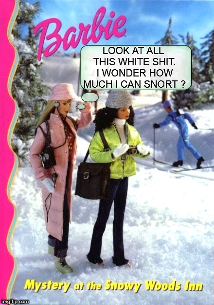dumb blonde  | LOOK AT ALL THIS WHITE SHIT. I WONDER HOW MUCH I CAN SNORT ? | image tagged in barbeed,barbie,snow,cocaine,cocaine is a hell of a drug,dumb blonde | made w/ Imgflip meme maker