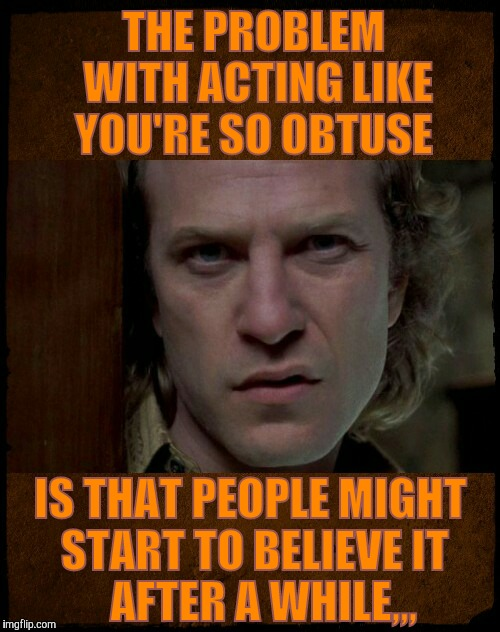 THE PROBLEM   WITH ACTING LIKE   YOU'RE SO OBTUSE IS THAT PEOPLE MIGHT START TO BELIEVE IT       AFTER A WHILE,,, | image tagged in buffalo bill,are you serious | made w/ Imgflip meme maker