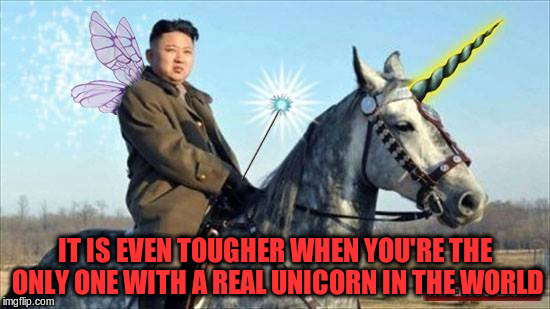 IT IS EVEN TOUGHER WHEN YOU'RE THE ONLY ONE WITH A REAL UNICORN IN THE WORLD | made w/ Imgflip meme maker