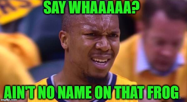 huh | SAY WHAAAAA? AIN'T NO NAME ON THAT FROG | image tagged in huh | made w/ Imgflip meme maker