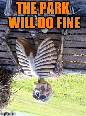 Waiting Skeleton Meme | THE PARK WILL DO FINE | image tagged in memes,waiting skeleton | made w/ Imgflip meme maker