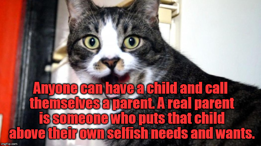 Anyone can have a child and call themselves a parent. A real parent is someone who puts that child above their own selfish needs and wants. | made w/ Imgflip meme maker
