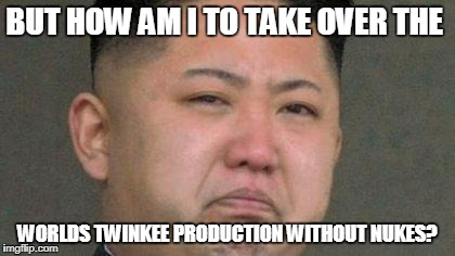 Sad Kim Jong Un | BUT HOW AM I TO TAKE OVER THE WORLDS TWINKEE PRODUCTION WITHOUT NUKES? | image tagged in sad kim jong un | made w/ Imgflip meme maker