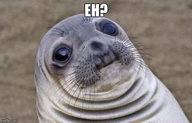 Awkward Moment Sealion Meme | EH? | image tagged in memes,awkward moment sealion | made w/ Imgflip meme maker