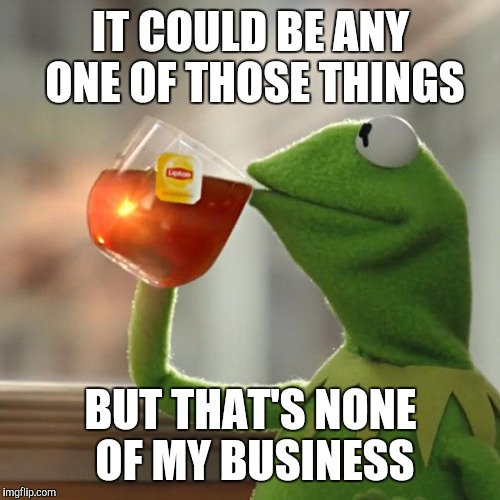But Thats None Of My Business Meme | IT COULD BE ANY ONE OF THOSE THINGS BUT THAT'S NONE OF MY BUSINESS | image tagged in memes,but thats none of my business,kermit the frog | made w/ Imgflip meme maker