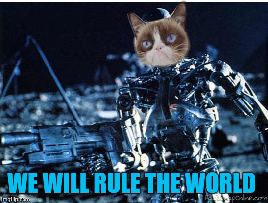 grump cat terminator | WE WILL RULE THE WORLD | image tagged in grump cat terminator | made w/ Imgflip meme maker