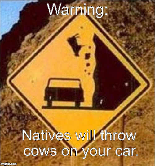 Warning: Natives will throw cows on your car. | image tagged in falling animal road sign | made w/ Imgflip meme maker
