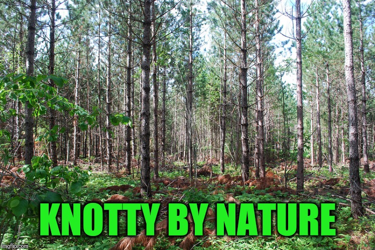 KNOTTY BY NATURE | made w/ Imgflip meme maker