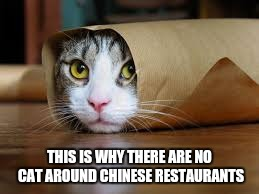 Funny animals | THIS IS WHY THERE ARE NO CAT AROUND CHINESE RESTAURANTS | image tagged in funny animals | made w/ Imgflip meme maker