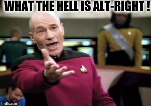 Picard Wtf Meme | WHAT THE HELL IS ALT-RIGHT ! | image tagged in memes,picard wtf | made w/ Imgflip meme maker