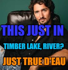 THIS JUST IN TIMBER LAKE, RIVER? JUST TRUE D'EAU | made w/ Imgflip meme maker