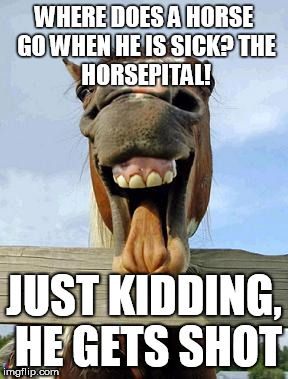 horsesmile | WHERE DOES A HORSE GO WHEN HE IS SICK? THE HORSEPITAL! JUST KIDDING, HE GETS SHOT | image tagged in horsesmile | made w/ Imgflip meme maker