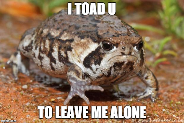 Grumpy Toad | I TOAD U TO LEAVE ME ALONE | image tagged in memes,grumpy toad | made w/ Imgflip meme maker