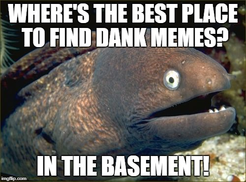 Bad Joke Eel Meme | WHERE'S THE BEST PLACE TO FIND DANK MEMES? IN THE BASEMENT! | image tagged in memes,bad joke eel | made w/ Imgflip meme maker