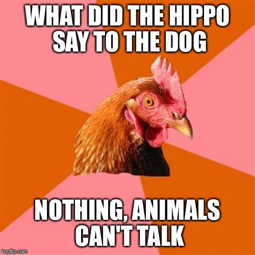 Anti Joke Chicken Meme | WHAT DID THE HIPPO SAY TO THE DOG NOTHING, ANIMALS CAN'T TALK | image tagged in memes,anti joke chicken | made w/ Imgflip meme maker