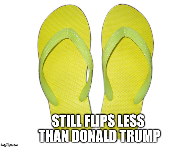 Flip Flops | STILL FLIPS LESS THAN DONALD TRUMP | image tagged in flip flops | made w/ Imgflip meme maker