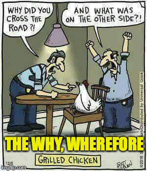 Interrogation  | THE WHY, WHEREFORE | image tagged in why the chicken cross the road | made w/ Imgflip meme maker