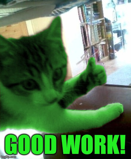 thumbs up RayCat | GOOD WORK! | image tagged in thumbs up raycat | made w/ Imgflip meme maker