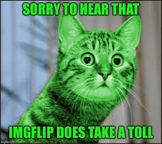 RayCat WTF | SORRY TO HEAR THAT IMGFLIP DOES TAKE A TOLL | image tagged in raycat wtf | made w/ Imgflip meme maker