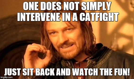 One Does Not Simply Meme | ONE DOES NOT SIMPLY INTERVENE IN A CATFIGHT JUST SIT BACK AND WATCH THE FUN! | image tagged in memes,one does not simply | made w/ Imgflip meme maker