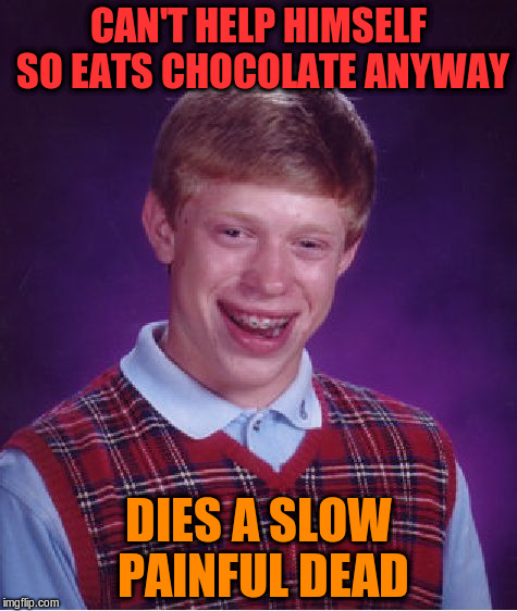 Bad Luck Brian Meme | CAN'T HELP HIMSELF SO EATS CHOCOLATE ANYWAY DIES A SLOW PAINFUL DEAD | image tagged in memes,bad luck brian | made w/ Imgflip meme maker